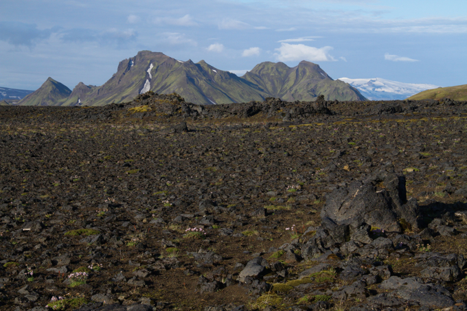 Day 3's trek took us through fields and fields of black lava stones.