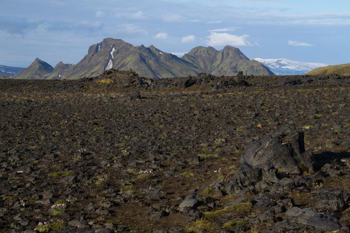 Day 3's trek took us through fields and fields of black lava stones.