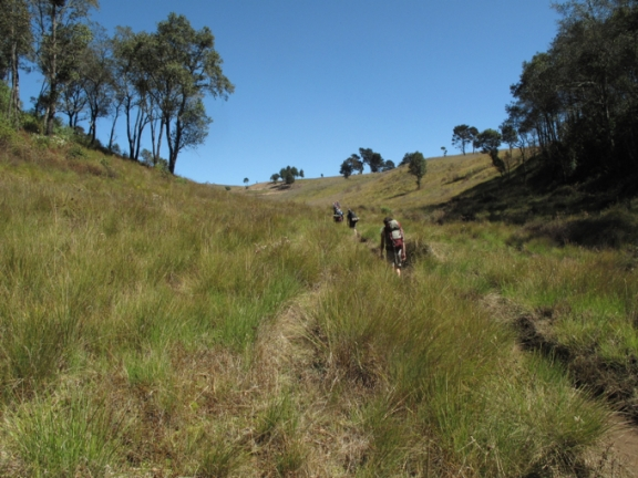 Trekking through a high altitude grass plain on Day One.