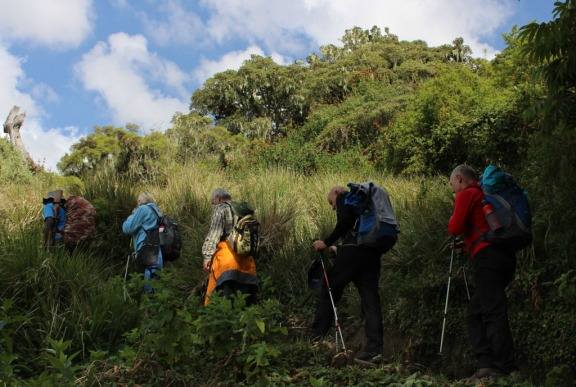 An armed park ranger accompanies our fellow hikers along the trail to Mt. Meru.