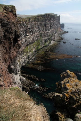 Látrabjarg Bird Cliffs