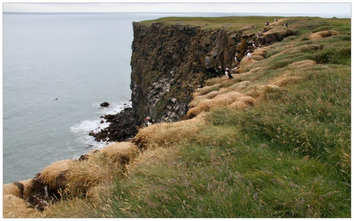 The Cliffs of Ingólfshöfði