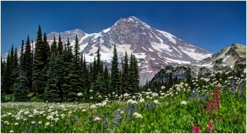 Mount Rainier's West Side