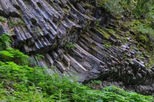 Andesite Columns at South Puyallup River Camp