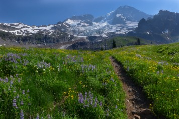 The Trail to Emerald Ridge