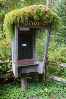 Phone Booth in the Hoh