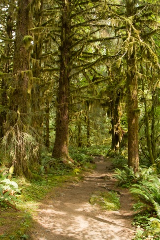 Spruce Nature Trail