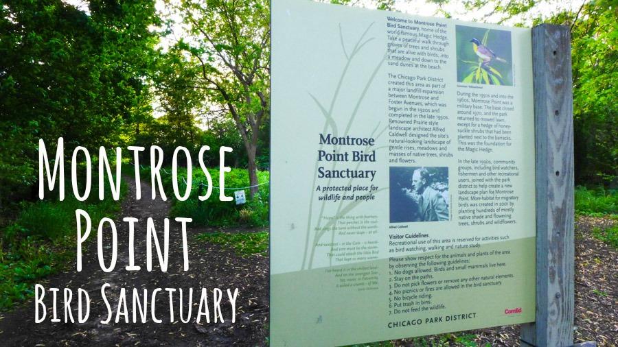 Montrose Point