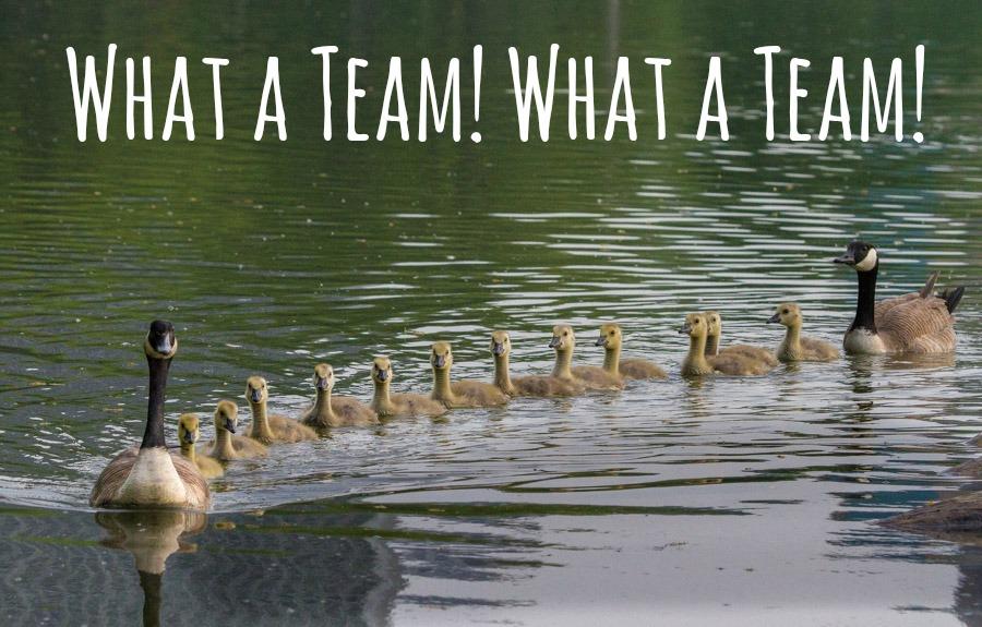 What a team!